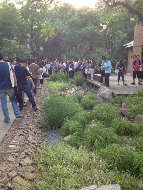 On-Campus Rain Garden