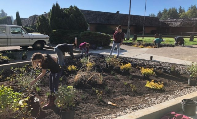 Astoria Middle School Rain Garden | MFA