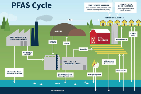 Diagram illustrating the PFAS cycle